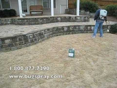 Green Lawn application