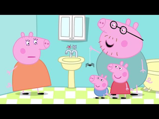 Peppa Pig 粉红猪小妹 第五季22【蜘蛛網】中文版