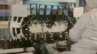 Сектор газа клип Гуляй мужик