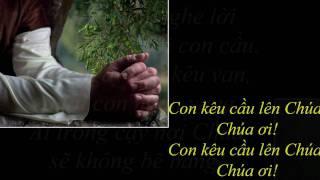 Con Kêu Cầu Lên Chúa - Nguyễn Mộng Huỳnh (Chúa Nhật 17 Thường Niên, Năm C)