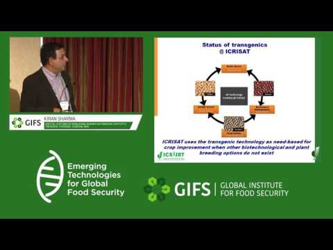 From discovery research to translation in grain legume by Kiran Sharma