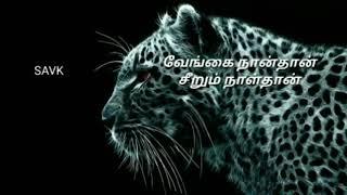 Varuthu Varuthu Vilagu Vilagu -  Thoongathe Thambi Thoongathe - தமிழ்  Whatsapp Status