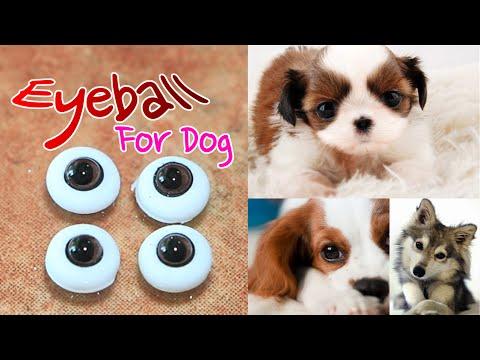 미니어쳐 강아지 ✔ 눈 Miniature Dog Eyeball Polymerclay & resin