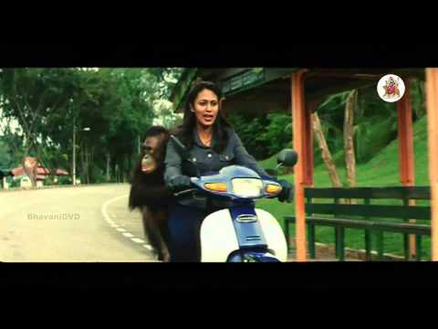 Sahasa Baludu Vichitra Kothi Movie - Brahmanandam, Manya, Funny  Scene