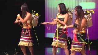 Night of Asia 2014 in JAX Part 08 - Folk Dance by Vietnamese Association of Jacksonville