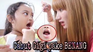 Gambar cover Cabut Gigi Pakai Benang!! HISTERIS!! || Marisha Chacha