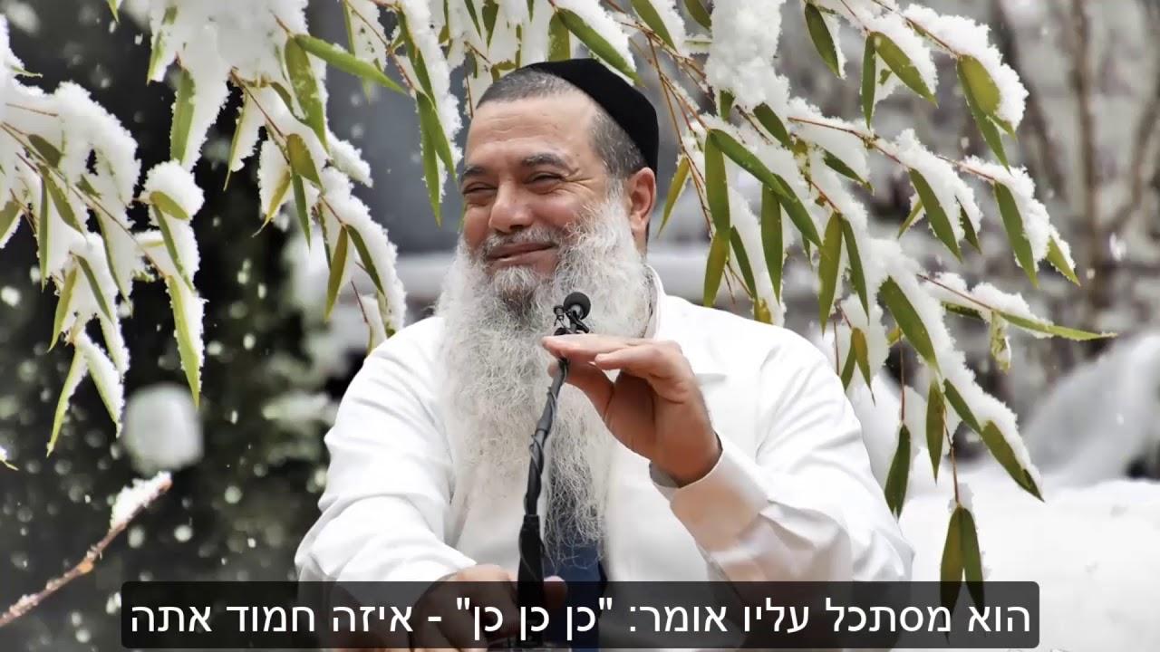 הרב יגאל כהן - קצרים | סרטון למי שמאמין שהוא לא יכול להצליח! [כתוביות]