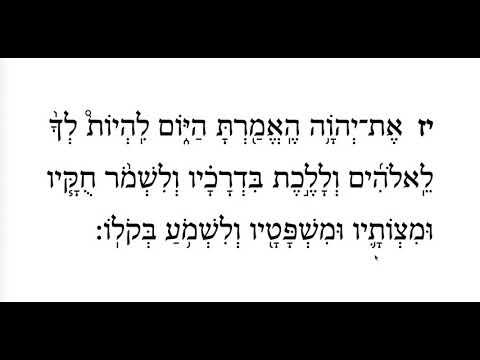 Ki Tavo, 3rd Aliyah, Pasuk 2