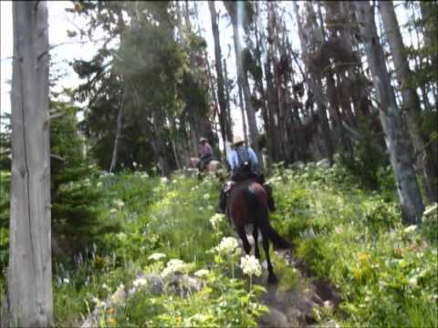 Wyoming Yellowstone fishing, hunting and pack in horseback riding