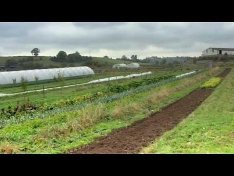 Ruskin Vale Organics