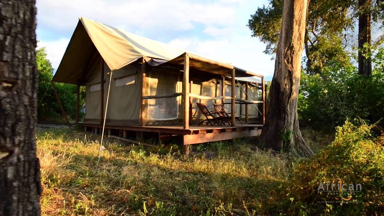 Linyanti ebony camp botswana