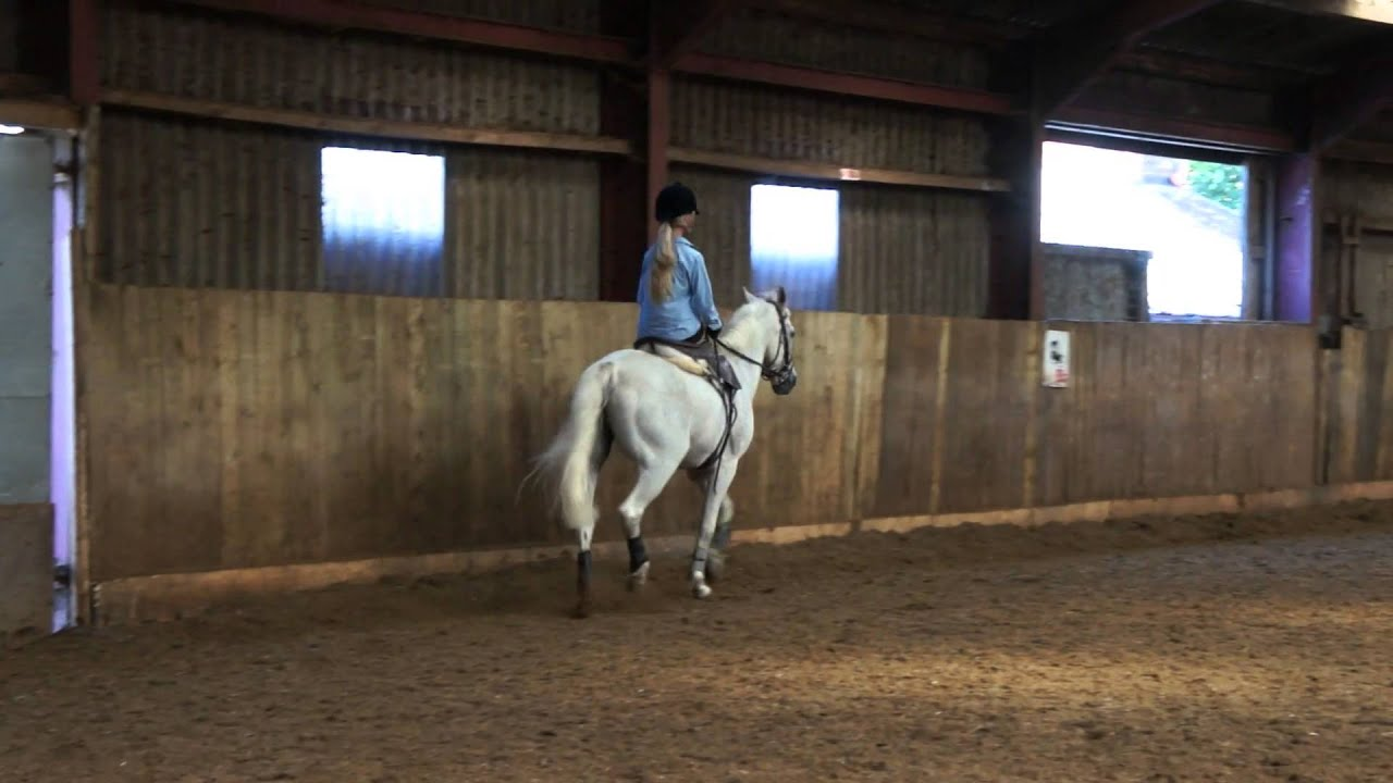 Tab S First Side Saddle Lesson At Wrea Green Equestrian