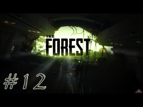 The Forest | CoOp | #12 | Radio