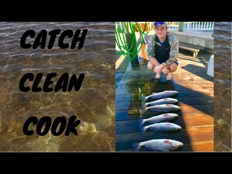 Fishing For Redfish (catch, clean, cook)