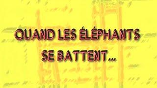 QUAND LES ELEPHANTS SE BATTENT ...SAISON1 EP8 - BURKINA FASO