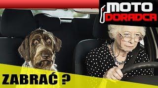Czy zabrać seniorom prawo jazdy?! #MOTODORADCA