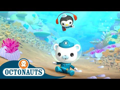 Octonauts - Boom in the Ocean   Cartoons for Kids   Underwater Sea Education