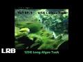 ToT EP1 125L Algae Gar Barb Tank