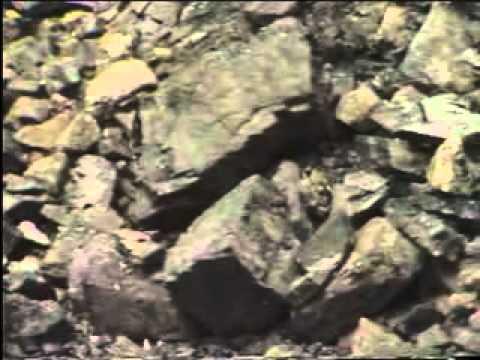 bahan tambang dan sumber tenaga