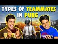 Types of TEAMMATES in PUBG | The Half-Ticket Shows