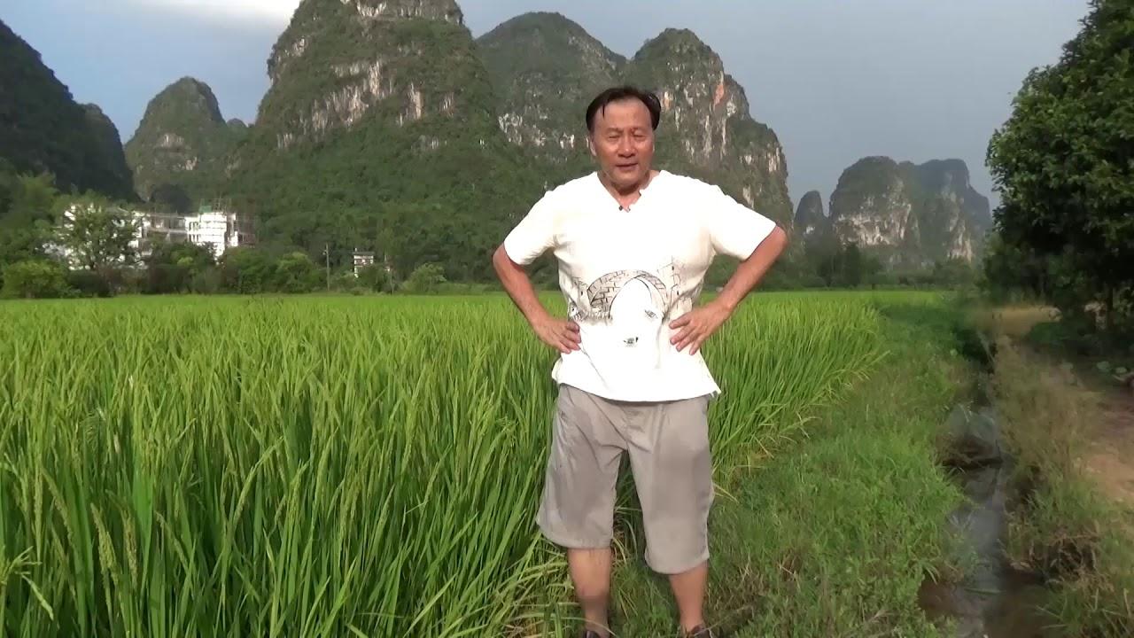Qigong to Release Sexual Energy by opening the Kua. - YouTube