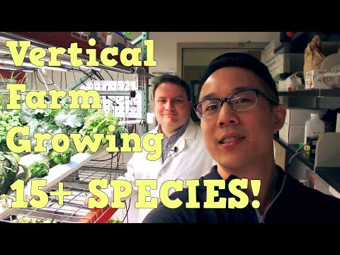 Vertical Farm Growing 15+ Species! | Future Farms and Food Ep. 1 | Dr. Paul Gauthier Interview