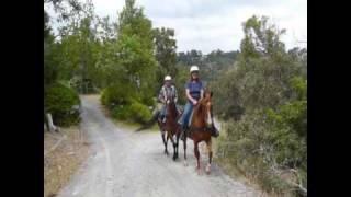 Horse Riding Adelaide