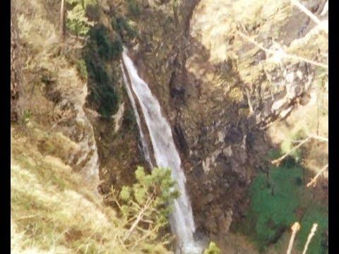 SUPER 8 film - Prašuma Perućica / Virgin forest Perucica