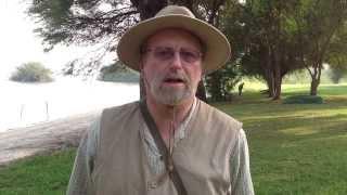 Tanzania Safari Testimony