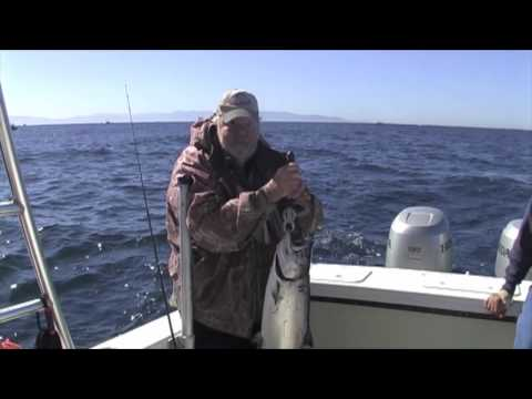 Salmon Monterey CA Trolling With Action FBR™ Lures
