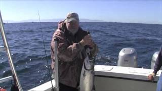 salmon monterey ca trolling with action fbr lures