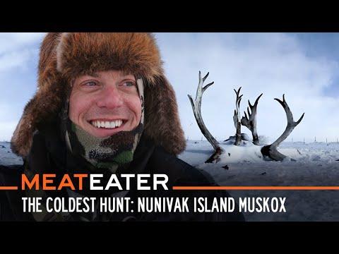 The Coldest Hunt: