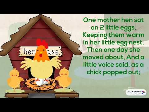 I'm a spring chicken