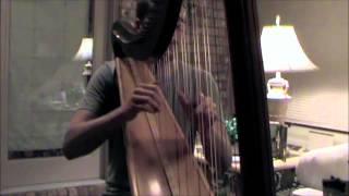 Tomb Raider Theme on the Harp