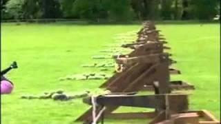 Watermelon Headshot with catapult - REMIX -
