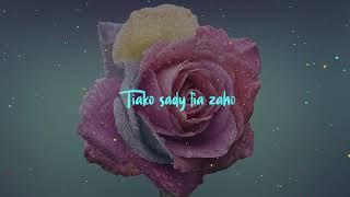 Welvi Waves  Tiako tia za ( Lyrics video )