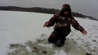 трудовая была рыбалка зима 2021г