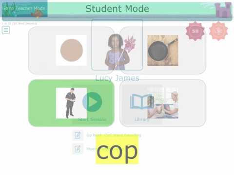 Accessible Literacy Learning (ALL) Word Decoding Activities
