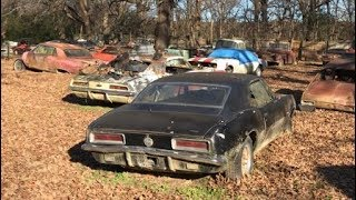 FIELD OF DREAMS!!! NEGLECTED AND ABANDONED JUNKYARD FULL OF 1ST GEN CAMAROS AND MUSCLE CARS