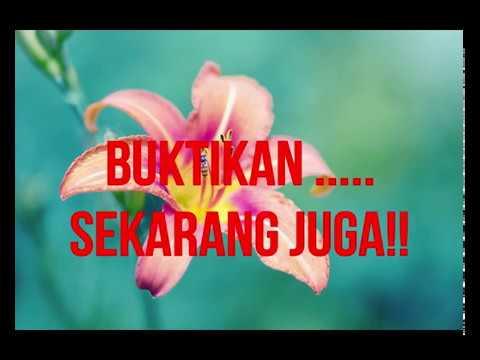 AMPUHHH!! Air Perawan Kalimantan ASLI Bikin KEMBALI GADIS