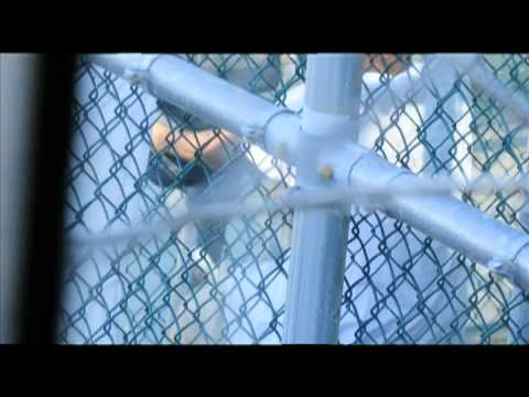 GITMO Terrorist Detainees 2011 - Inside Guantanamo Bay Detention Camp (Part 4)