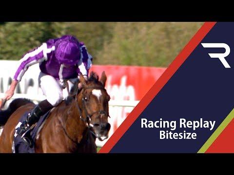 irish-champions-weekend-day-one---racing-replay-bitesize---racing-tv