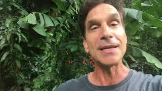 Victor Fasano convida para projeto em Rancho Queimado