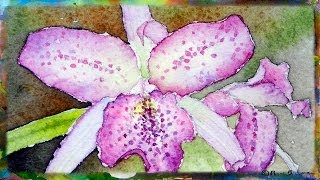 How to Paint the Cattleya Orchid, Miniature Watercolor Painting