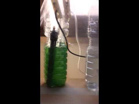 Spirulina - esperimento di coltura con bioreattore homemade