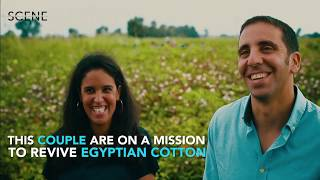 The Couple Reviving Egypt