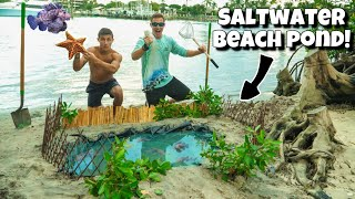 DIY EXOTIC BEACH FISH POND!! *Insane*