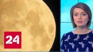 Редкое астрономическое явление: над Москвой взошла кровавая Луна - Россия 24