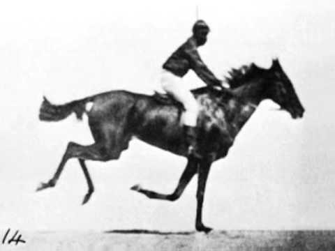 Race Horse First Film Ever 1878 Eadweard Muybridge