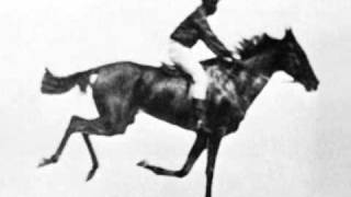 Race Horse First Film Ever 1878 Eadweard Muybridge